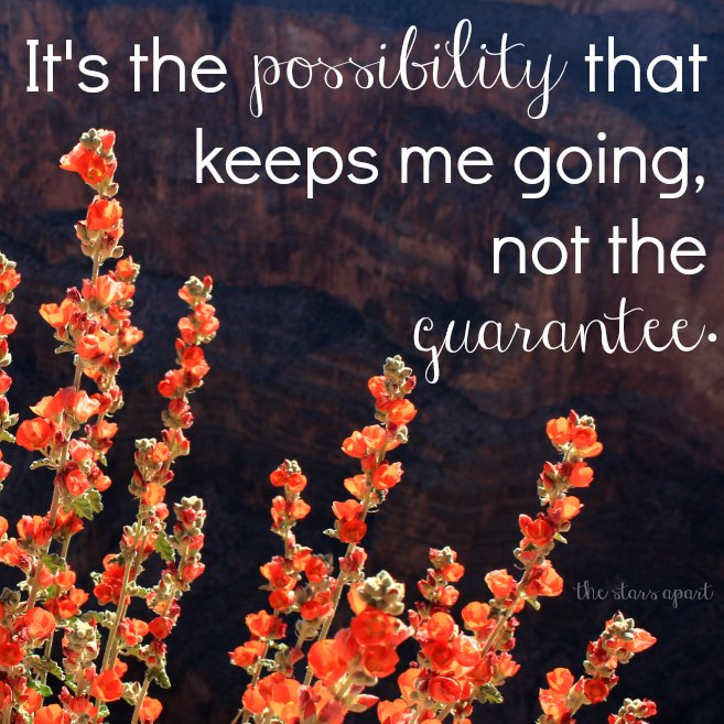 infertility quote - it's the possibility that keeps me going, not the guarantee