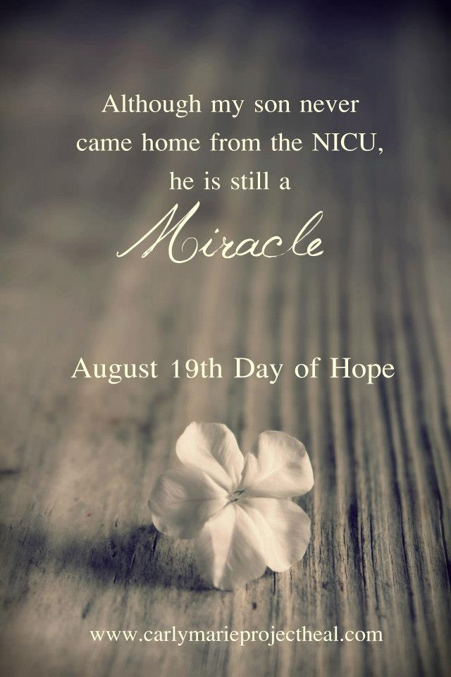 August 19th Day Of Hope The Stars Apart